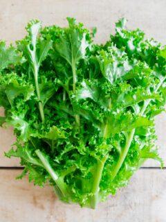 chicory greens